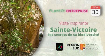 Visite inspirante : Sainte-Victoire, les secrets de sa biodiversité